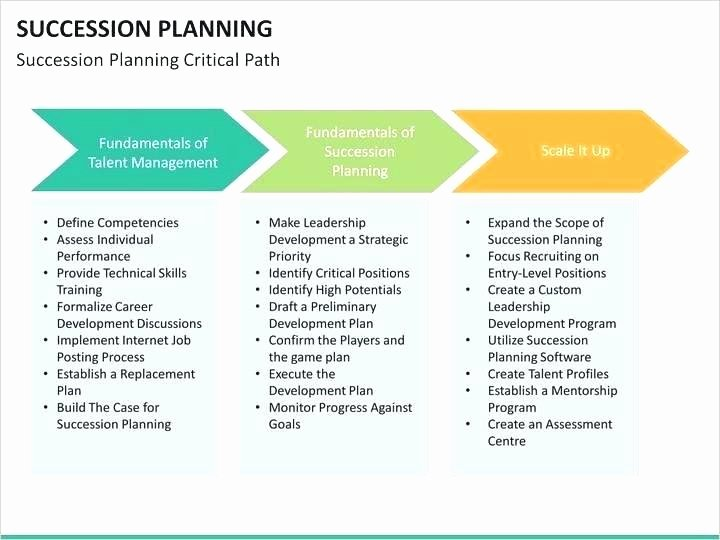 Business Succession Plan Template Beautiful Program Template Business Succession Plan Planning Decent
