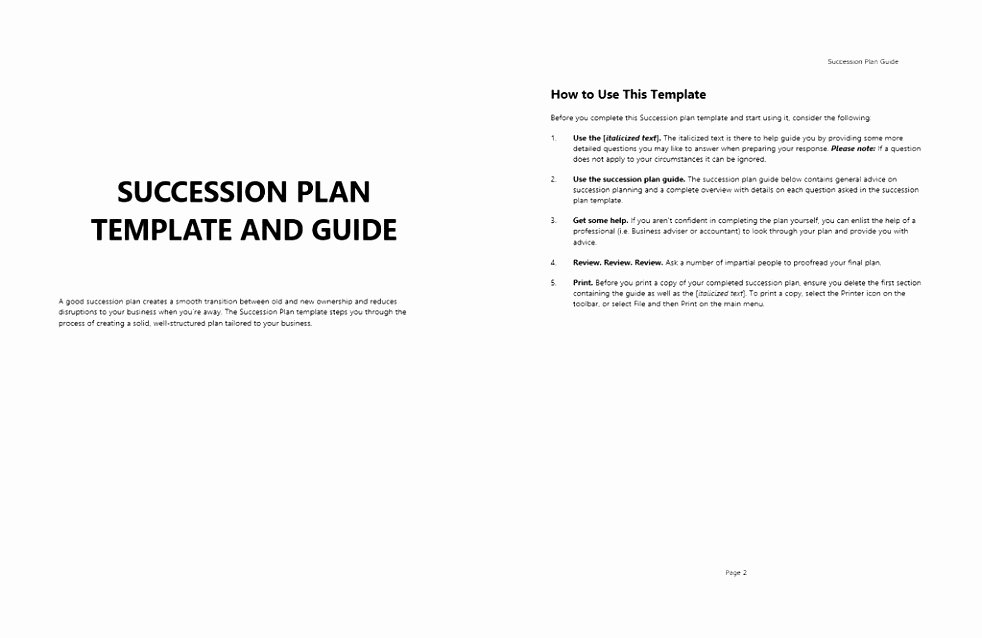 Business Succession Plan Template Beautiful Talent & Succession Succession Plan & 9 Box Grid Template