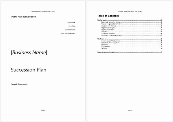 Business Succession Plan Template Best Of Business Succession Plan Template and Guide – Starters