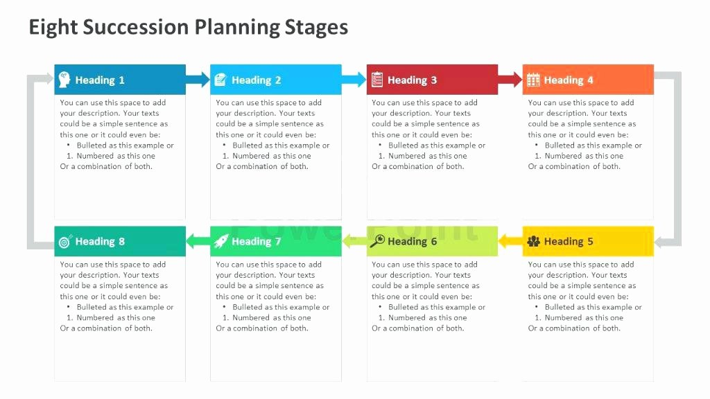 Business Succession Planning Template Awesome Succession Planning Model