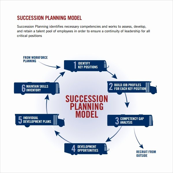 Business Succession Planning Template Best Of 10 Succession Plan Templates