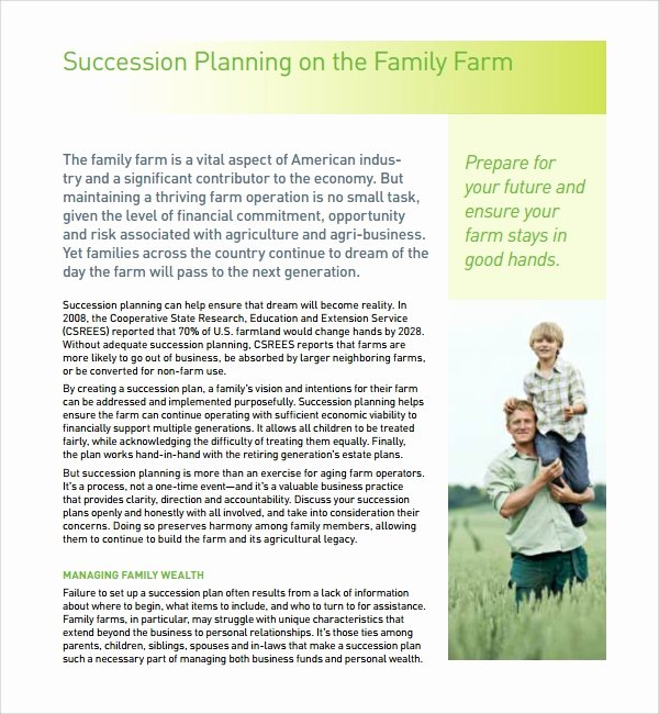 Business Succession Planning Template New 10 Succession Plan Templates