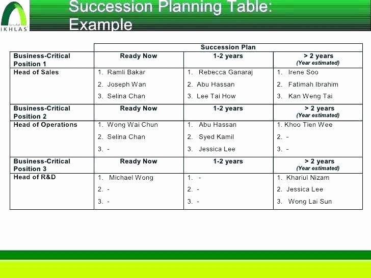 Business Succession Planning Template Unique Succession Planning Template Excel Readleaf Document