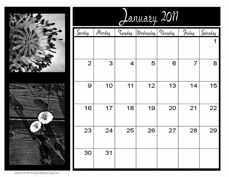 Calendar Template for Photoshop New Shop Calendar Template
