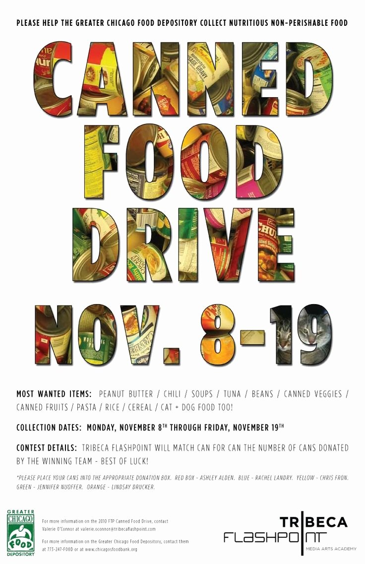 Canned Food Drive Flyer Template Beautiful 8 Best Food Drive Images On Pinterest
