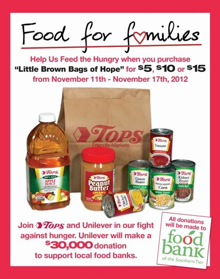 Canned Food Drive Flyer Template Best Of Food Bank Flyer Templates Drive Fly with