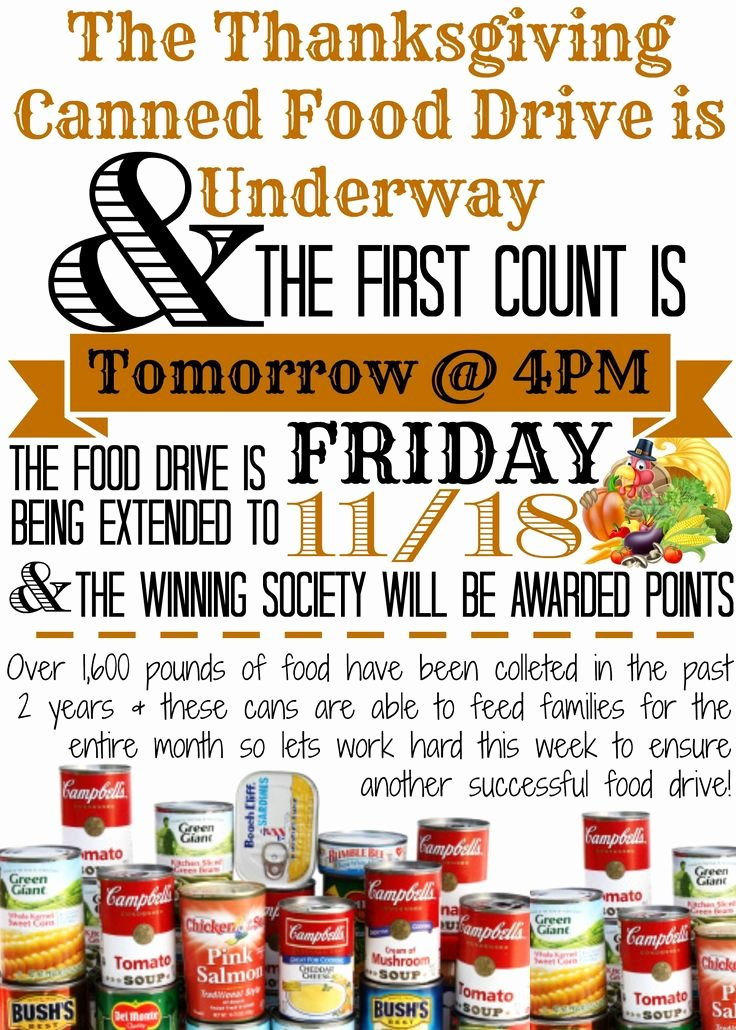 Canned Food Drive Flyer Template New 30 Best E Can Make A Difference Images On Pinterest