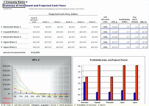 Capital Expenditure Budget Template Excel Inspirational Sample Capital Expenditure Bud Request form Excel
