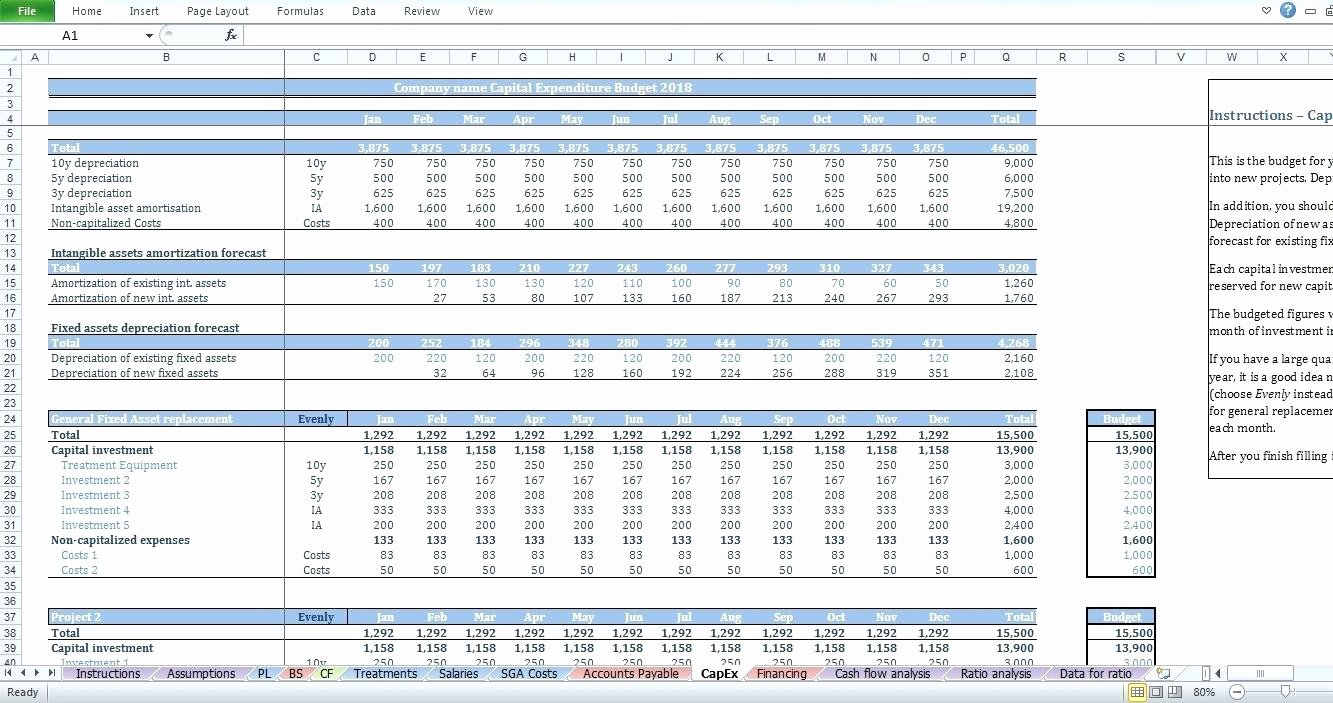 Capital Expenditure Budget Template Excel Lovely Famous Bud Ing Excel Template Elaboration Professional