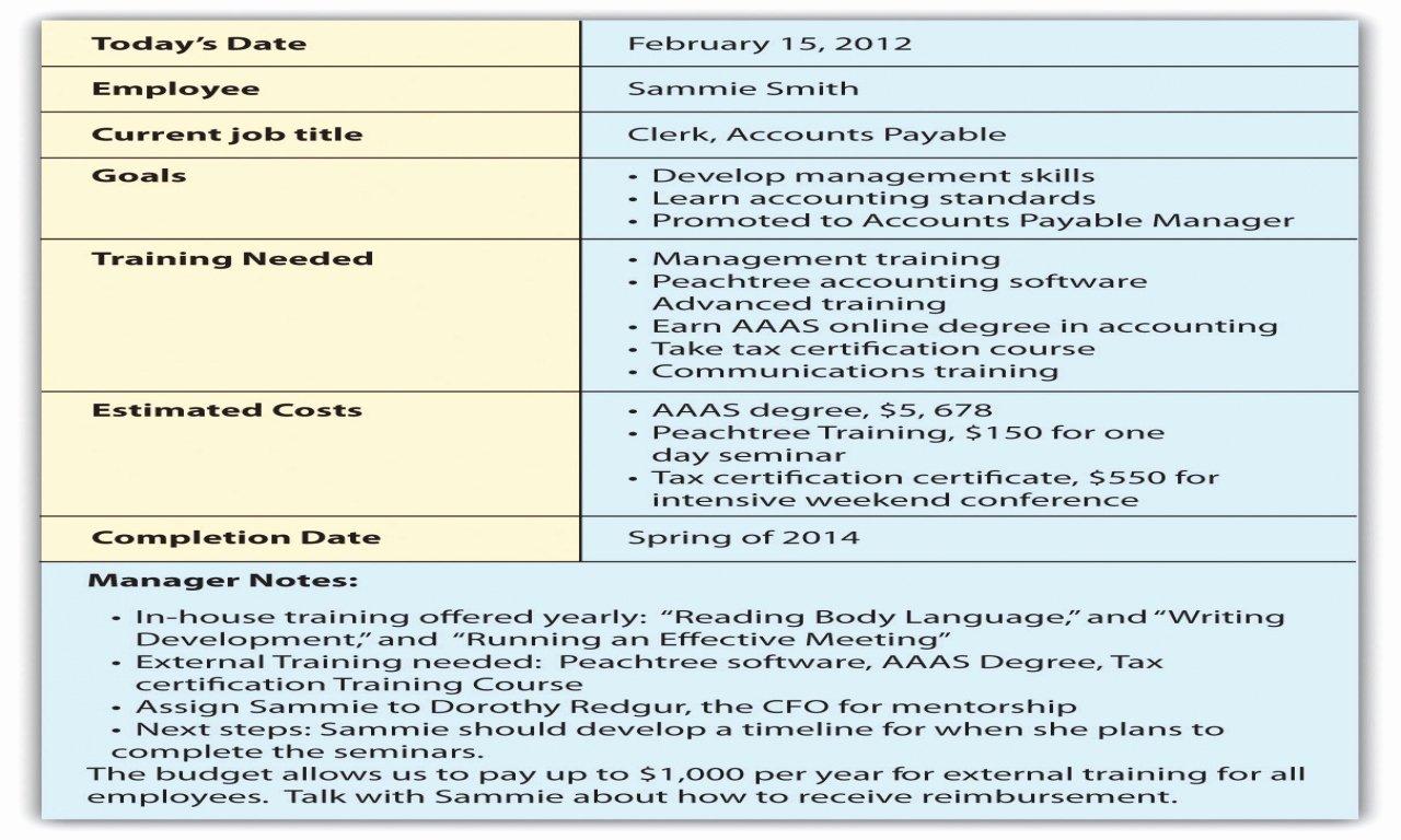 Career Development Plan Template Elegant Employee Career Development Plan Template 5 Year Career