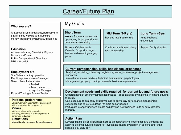Career Development Plan Template Luxury Career Plan Example