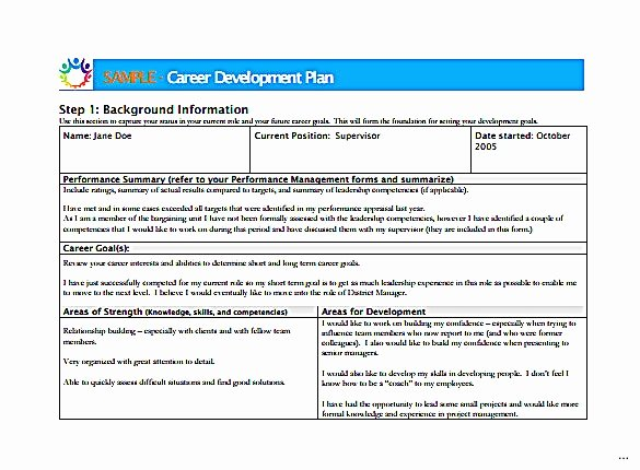 Career Development Plan Template New Career Development Plan