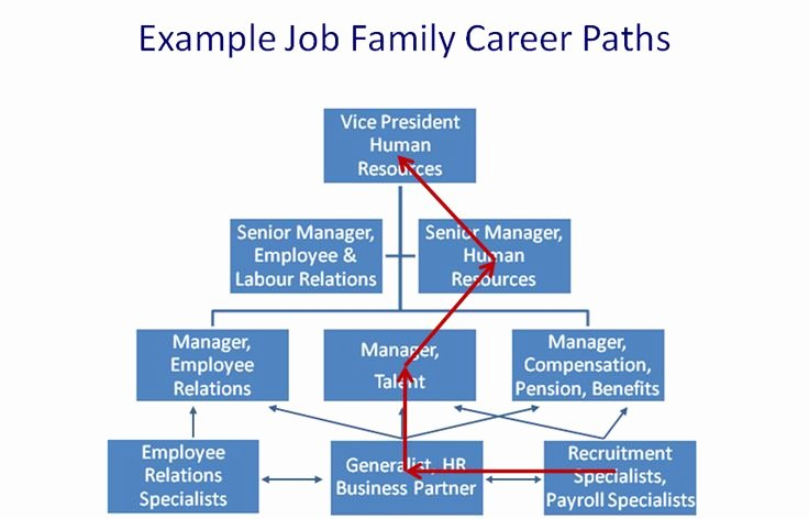 Career Path Planning Template Awesome Hr Job Family Career Path Hr Pinterest