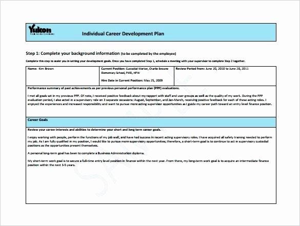 Career Path Planning Template Beautiful Career Roadmap Template – Buildingcontractor