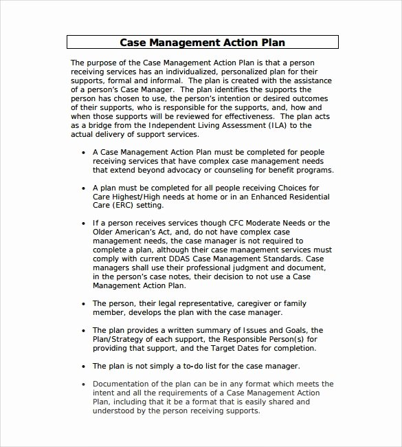 Case Management Notes Template Beautiful Sample Management Action Plan Template 8 Documents In