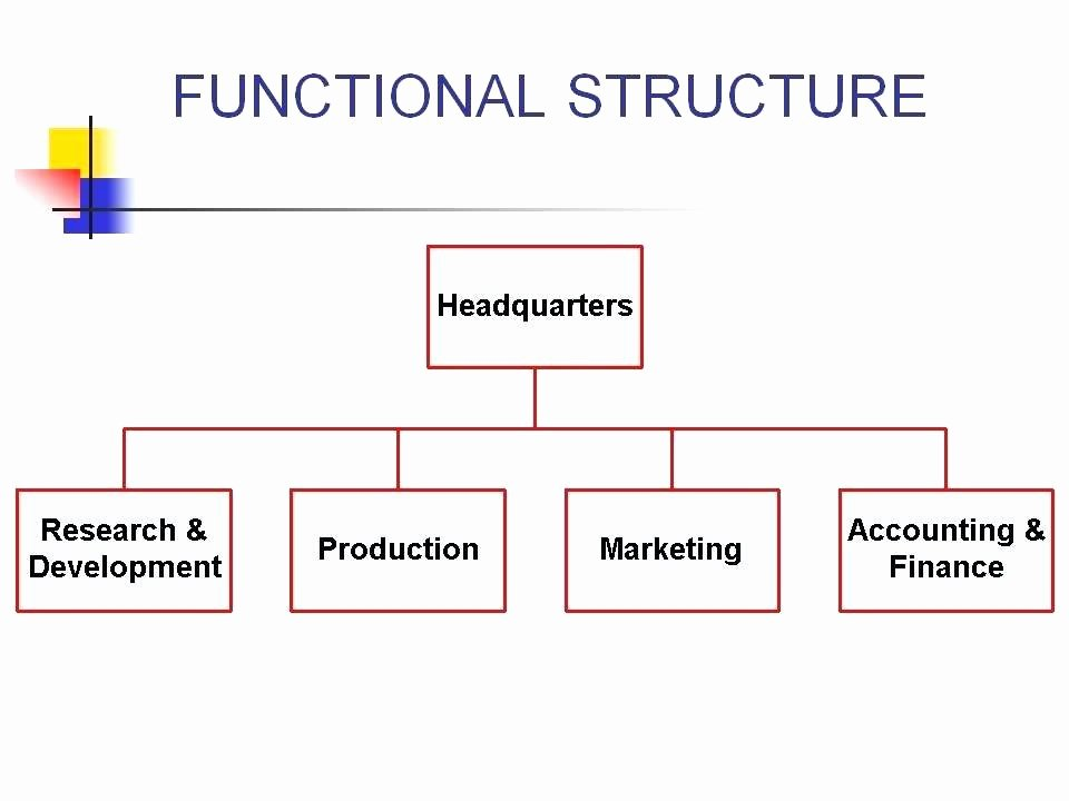 Chain Of Command Template Best Of Modified Project organisation Chain Mand In Business
