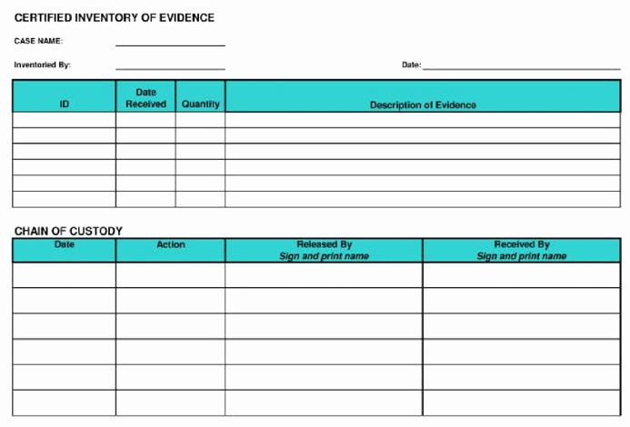 Child Visitation Log Template Inspirational Keeping A Chain Of Custody for Digital Evidence
