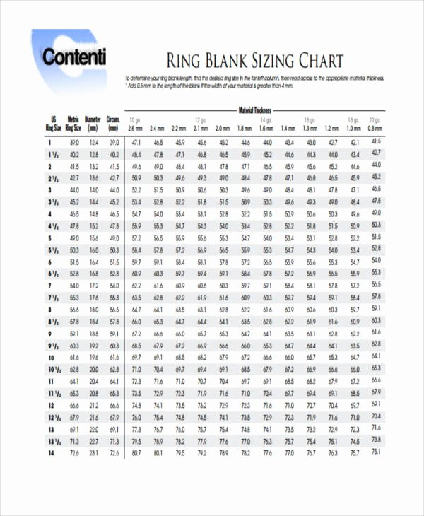 Clothing Size Chart Template Lovely Measurement Chart Templates 9 Free Sample Example