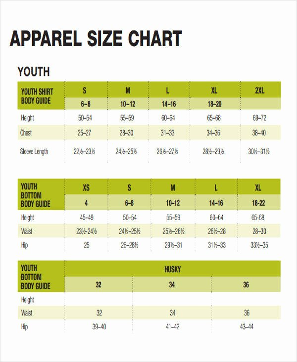 Clothing Size Chart Template Luxury 47 Printable Chart Templates