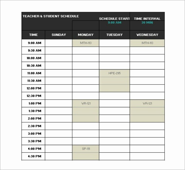 College School Schedule Template Best Of College Class Schedule Template