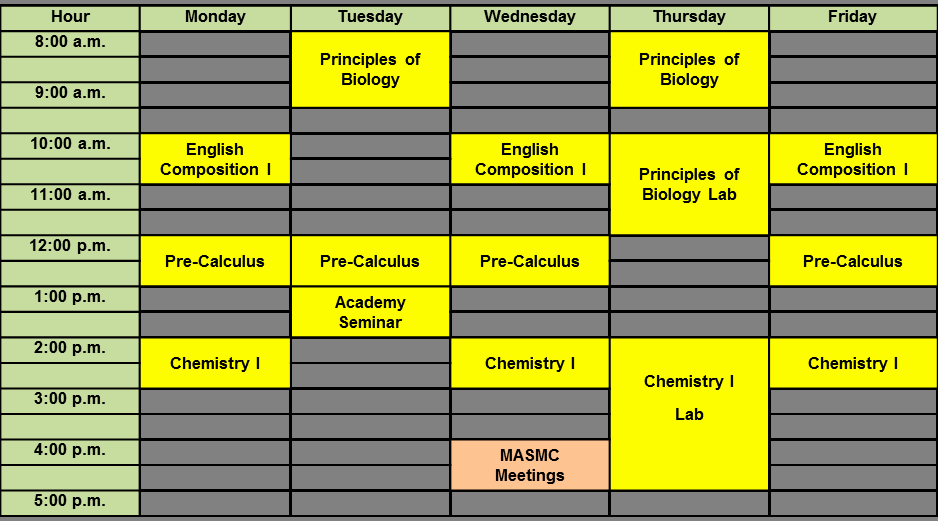 College School Schedule Template Elegant Nursing Schedule Template