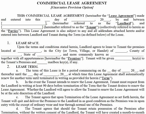 Commercial Lease Agreement Template Free Elegant Printable Sample Mercial Lease Agreement form