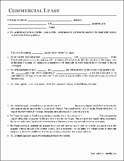 Commercial Lease Agreement Template Free Unique 782 Best Images About Real Estate forms Line On Pinterest