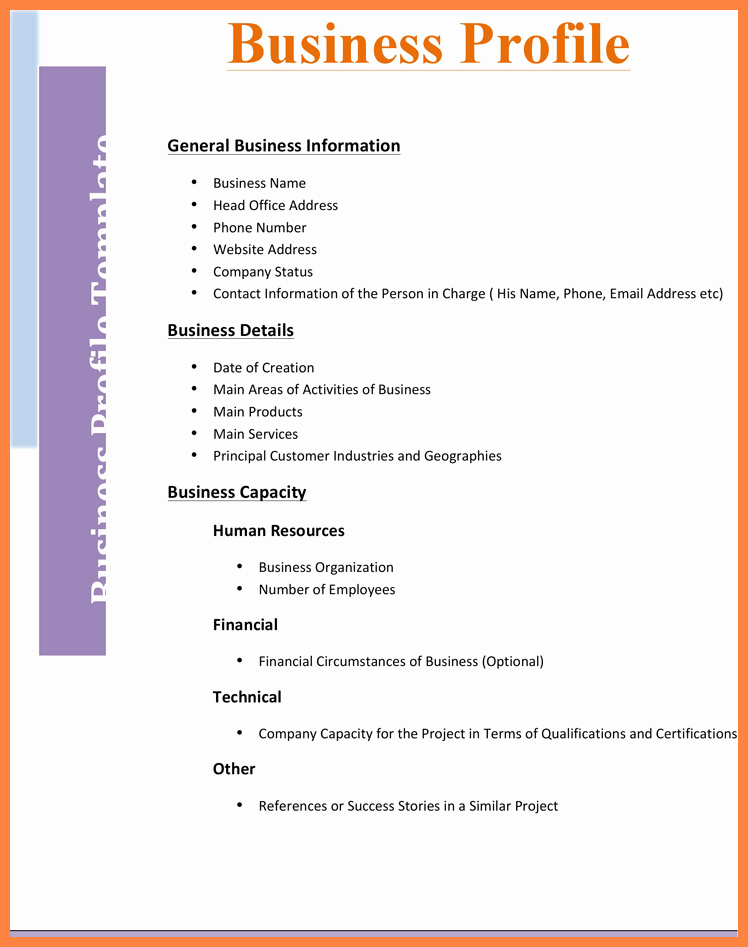 Company Info Sheet Template Awesome 4 Business Pany Profile Template