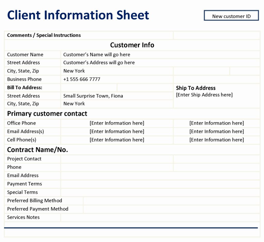 Company Info Sheet Template Inspirational Client Information Sheet Template