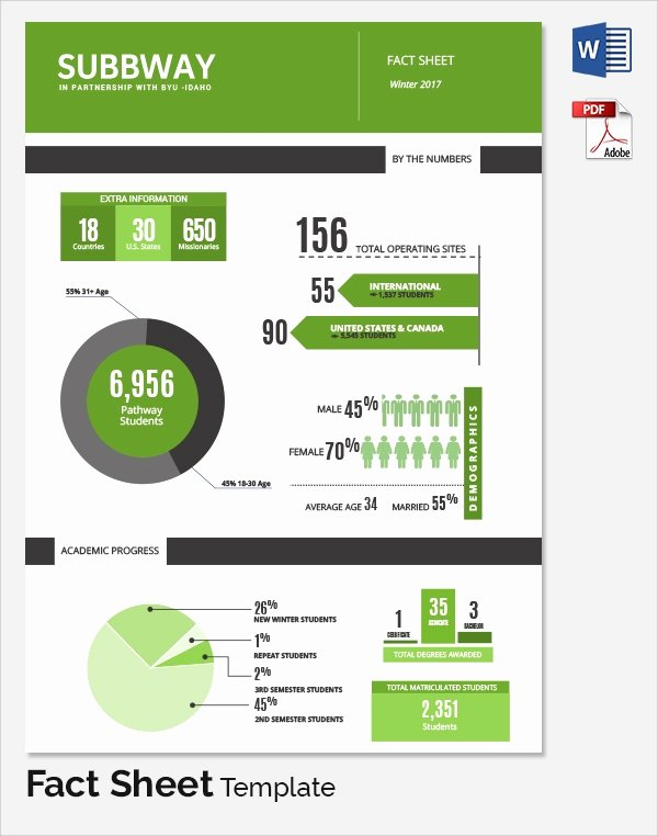 Company Info Sheet Template Inspirational Sample Fact Sheet Template 21 Free Download Documents