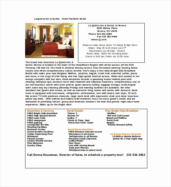 Company Info Sheet Template Lovely 24 Fact Sheet Templates Pdf Doc