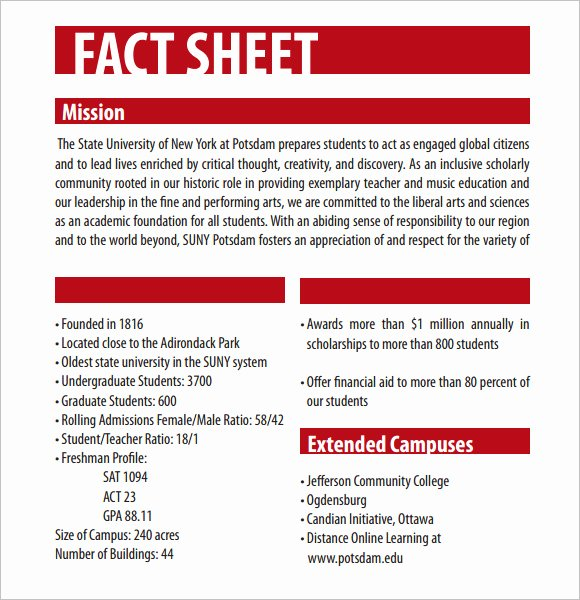 Company Info Sheet Template Luxury Fact Sheet Template – 12 Download Documents In Pdf Word