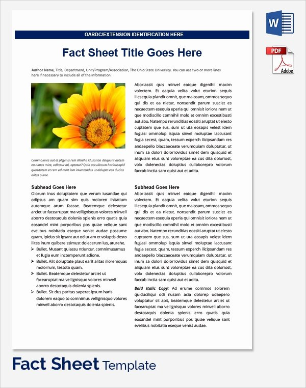 Company Info Sheet Template New Sample Fact Sheet Template 21 Free Download Documents