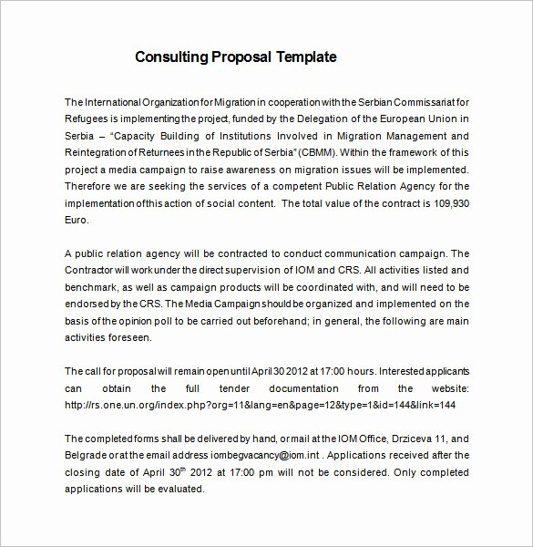 Consulting Report Template Microsoft Word Elegant 16 Consulting Proposal Templates Doc Pdf Excel