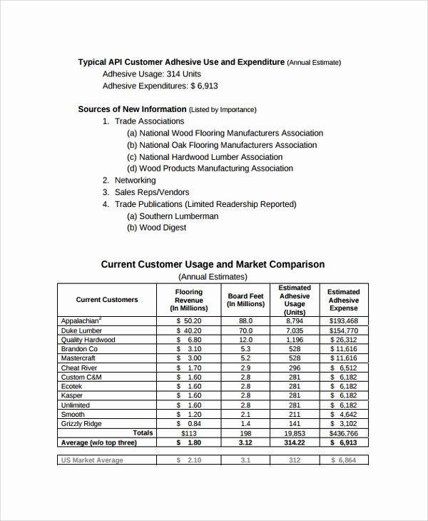 Consulting Report Template Microsoft Word Luxury 13 Sample Consulting Reports