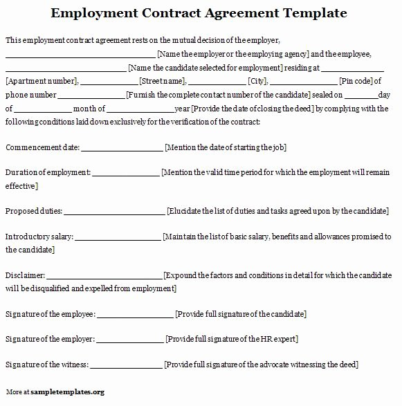 Contract Of Employment Template Fresh Free Printable Employment Contract Sample form Generic