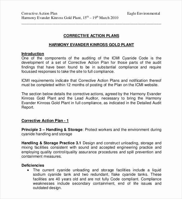 Corrective Action Plan Template Word New Corrective Action Plan Template 25 Free Word Excel Pdf