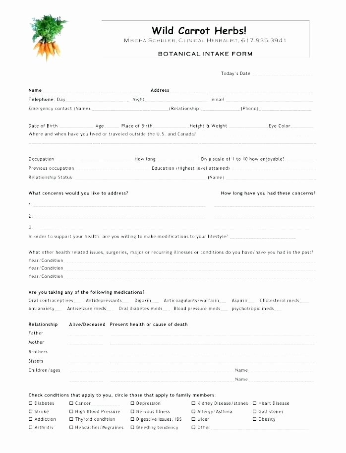 Counseling Intake form Template Beautiful Intake forms for Counseling Private Practice Client form