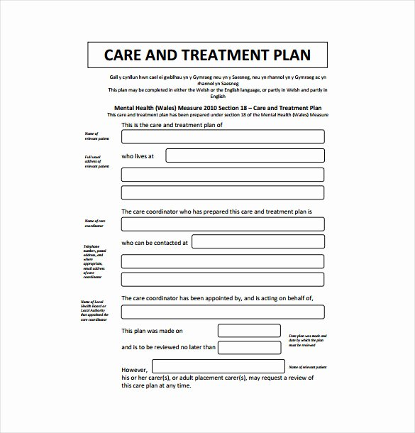 Counseling Treatment Plan Template Best Of 14 Treatment Plan Templates Sample Word Google Docs