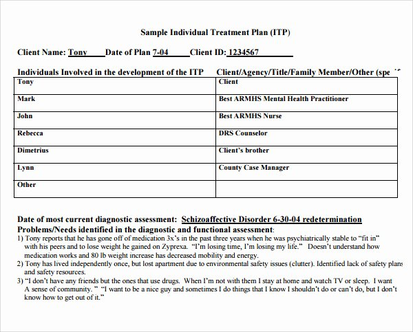 Counseling Treatment Plan Template Best Of Treatment Plan Template