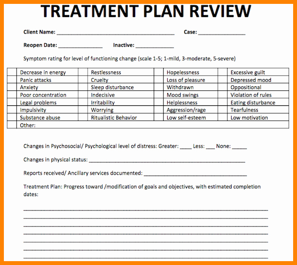 Counseling Treatment Plan Template Inspirational 18 Counseling Treatment Plan Template