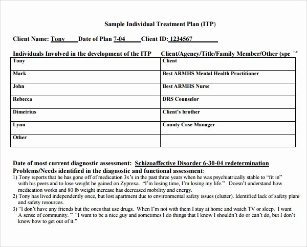 Counseling Treatment Plan Template Pdf Inspirational 8 Treatment Plan Templates