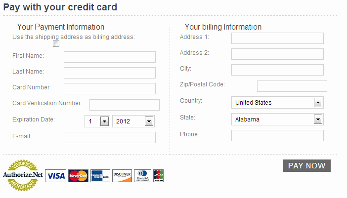 Credit Card Template Word Awesome 5 Free Credit Card Payment form Templates formats