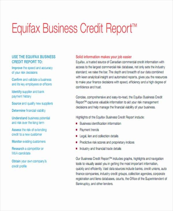 Credit Report Template Free Awesome 9 Sample Credit Report Templates Docs Word Pages