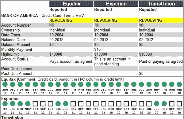 Credit Report Template Free Lovely Credit Reports Template