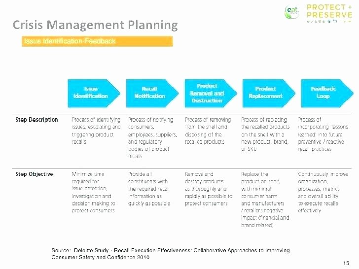 Crisis Management Plan Template Awesome Crisis Plan Template Management Mental Health Child