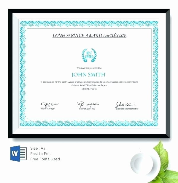 Customer Service Award Template Inspirational Service Award Template