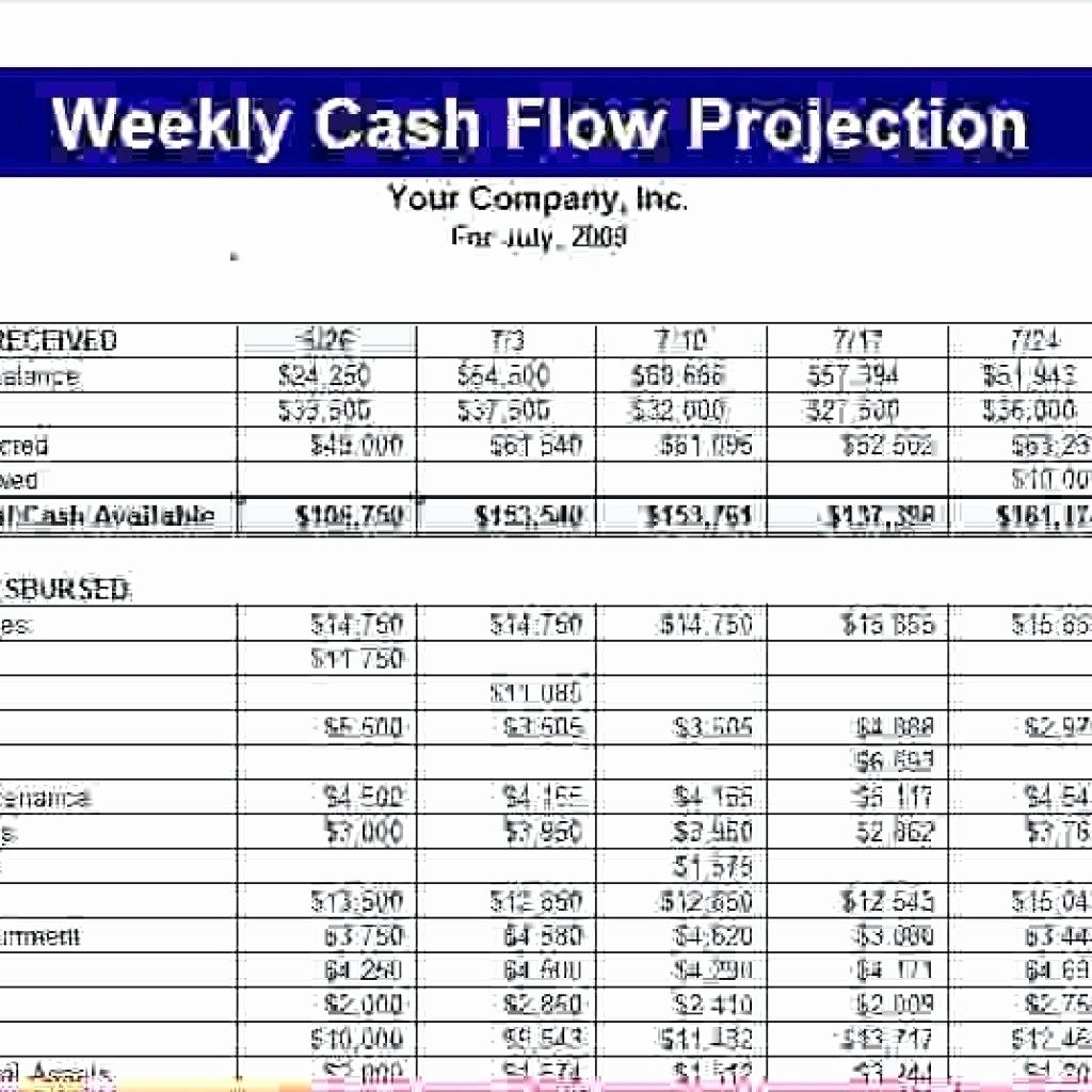 Daily Cash Flow Template Lovely Template Cash Projection Template