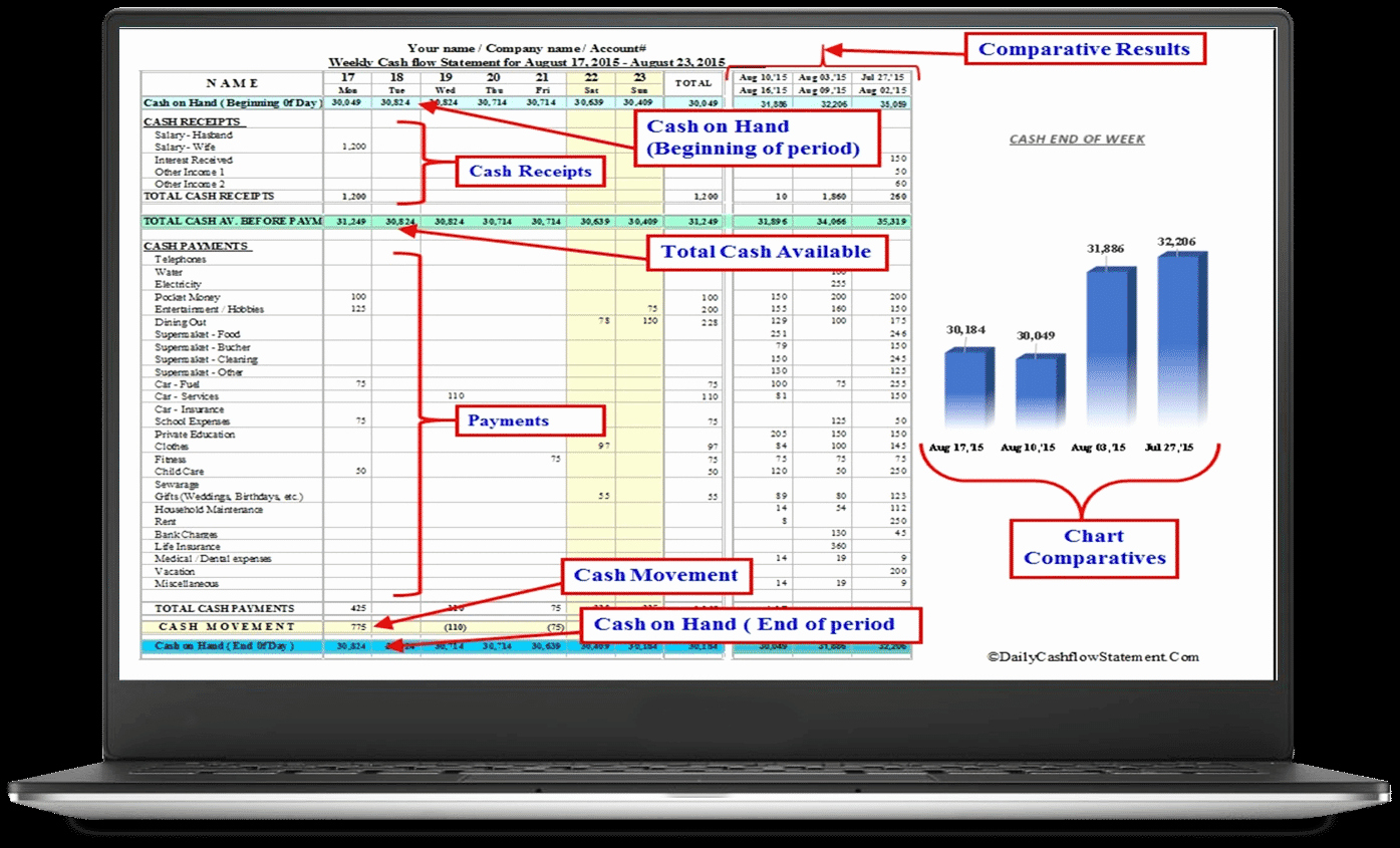 Daily Cash Report Template Excel Beautiful Cash Flow Statement