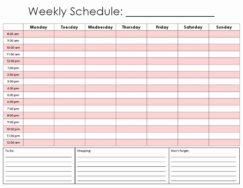 Daily Hourly Schedule Template Lovely Daily Hourly Calendar Template